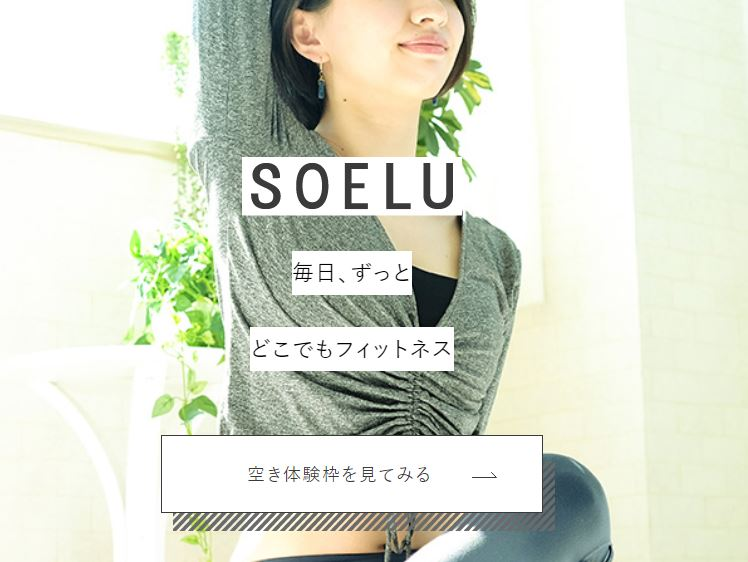 SOELUホームページの画像
